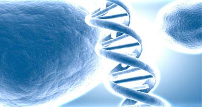 تأثير الطبيعة البشرية والجينات والبيئة في نمو الإنسان