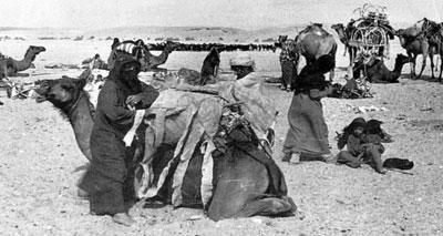 سودانيون يحملون الدم المغربي