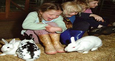 دراسة: الحيوانات الأليفة قد تزيد من مناعة الأطفال