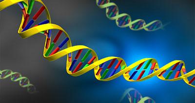 فك شيفرة خردة الحمض النووي