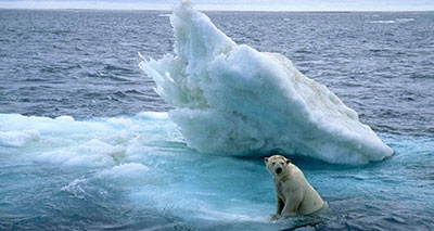 تغييرات حادة بالقطب الشمالي تنذر بوضع بيئي مقلق