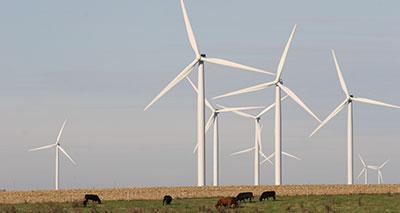 طاقة الرياح .. الأرخص تكلفة والأكثر حفاظا على البيئة