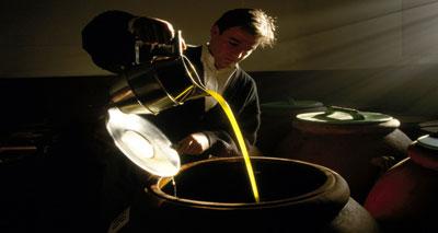 دراسة: الفوائد الصحية لزيت الزيتون الغنية بالأحماض الدهنية
