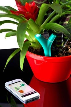 جهاز استشعار ذكي للعناية بالنباتات عن طريق الآيفون