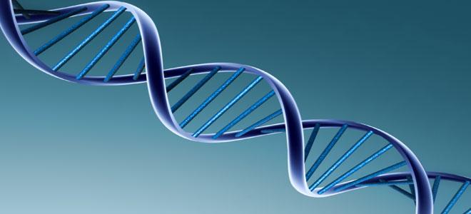 خبراء يكتشفون الجين المسبب للبدانة وسرطان الجلد