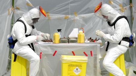 عدد المصابين بالايبولا قد يصل إلى 20 ألف مصاب بحلول نونبر 2014