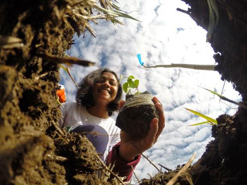 الفلبين تزرع 3.2 مليون شجرة بساعة واحدة