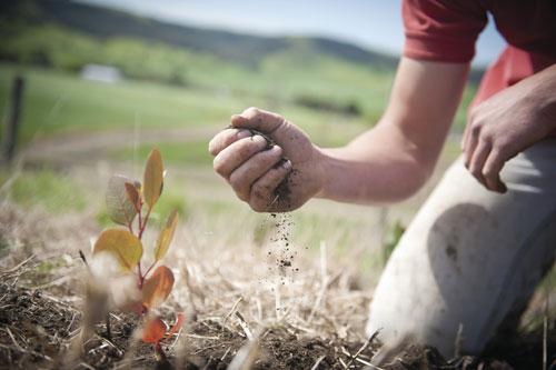 مؤتمر الأمم المتحدة للتنوع الحيوي: الأهداف المنشودة بعيدة المنال
