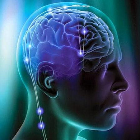 الأعمال المعقدة تقي المخ من الشيخوخة المبكرة