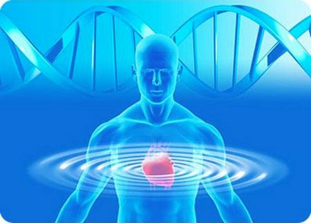 العلاج الجيني بديلاً لمنظم ضربات القلب