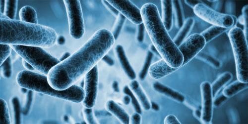 اكتشاف طريقة جديدة لتطوير مضادات حيوية لا تتمكن الجراثيم من مقاومتها