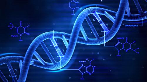 علماء يبتكرون نظير الحمض النووي لمكافحة الفيروسات