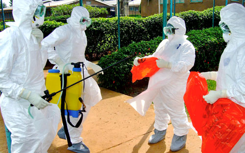 علماء: ابتكار لقاحات فعالة لمكافحة «إيبولا» يتطلب تعاونا دوليا