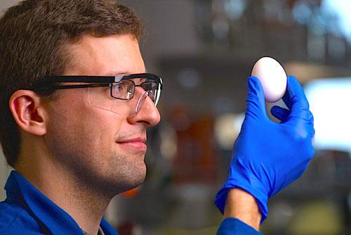 علماء يعيدون بيضة مسلوقة إلى وضعها الابتدائي