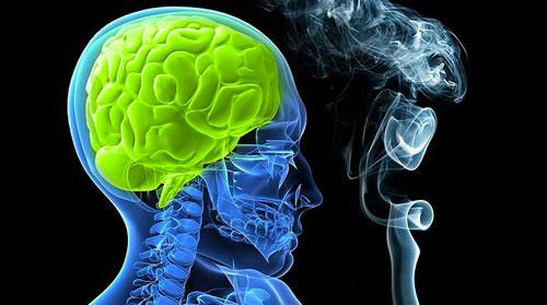 اختلاف تأثير التدخين على أدمغة الرجال والنساء