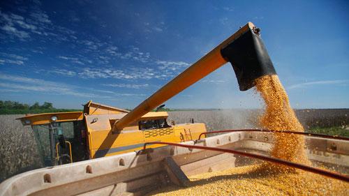 الاحتباس الحراري يهدد الأمن الغذائي