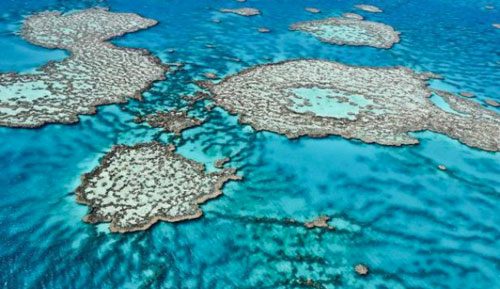 «Les océans du futur seront plus chauds, plus élevés et plus acides»