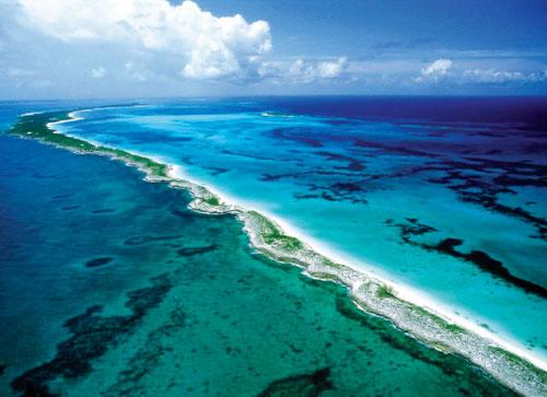 تحمض المحيطات يتهدد البيئة البحرية في العالم