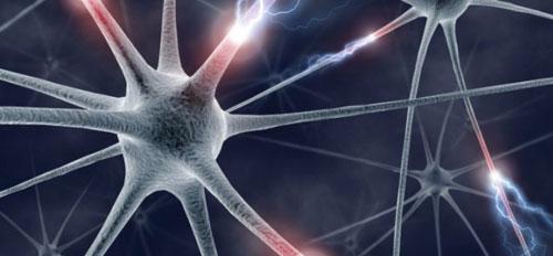 تقنية ثلاثية الأبعاد تعيد أعصاب مصابة إلى حالتها السليمة