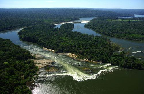 دراسة:تراجع قدرة غابات الامازون المطيرة على امتصاص غازات الاحتباس الحراري