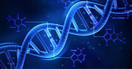 DNA tool helping biologists find elusive or invasive species