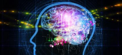 Les moteurs de recherche nous font croire que l'on est plus intelligent que ce qu'on est
