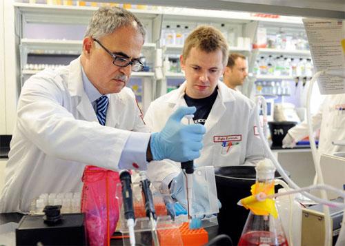 اختلال أسس التعليم الابتدائي يضعف الإنتاج البحثي في الجامعات العربية