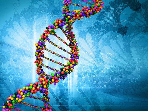 تجربة صينية لإعادة صياغة الجينوم البشري تثير الجدل حول أخلاقيات الهندسة الوراثية