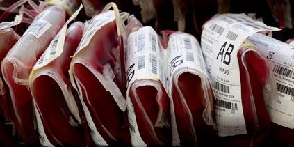 Les groupes sanguins pourraient devenir tous compatibles grâce à une enzyme