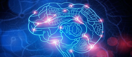 A first big step toward mapping the human brain