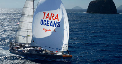 Tara Océans: «Nous allons mieux comprendre comment sera l'océan dans 50 ou 100 ans»