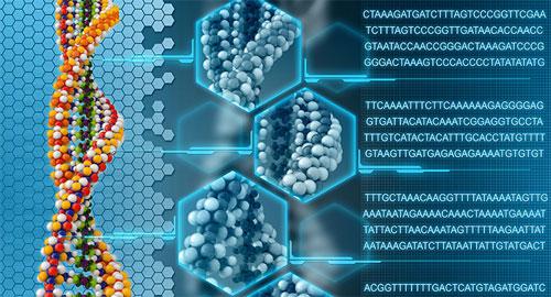 human-genome-f