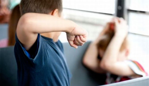 السلوك العنيف للطفل مرده ضعف اتزانه خلال فترة التكوين