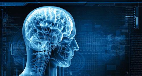 العلماء يزرعون ذكريات زائفة في الدماغ