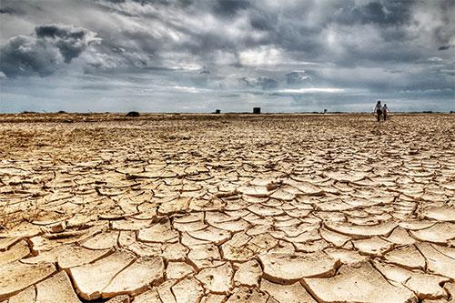 كينيا تعلن الجفاف كارثة قومية