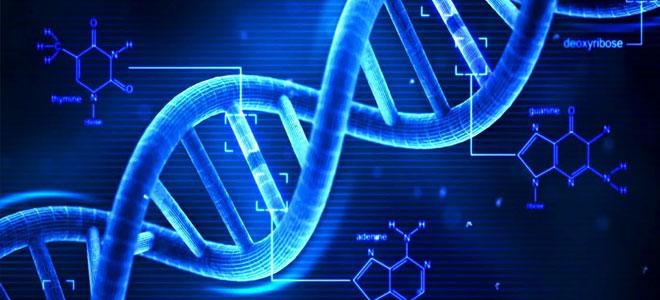 علاج تجريبي غير مسبوق يصحح عيوب الحمض النووي