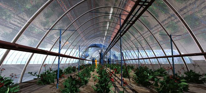 الإمارات تسعى لزراعة التمر والخس والطماطم على سطح المريخ
