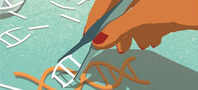 «مقص بيولوجي».. لإزالة الجينات المعطوبة