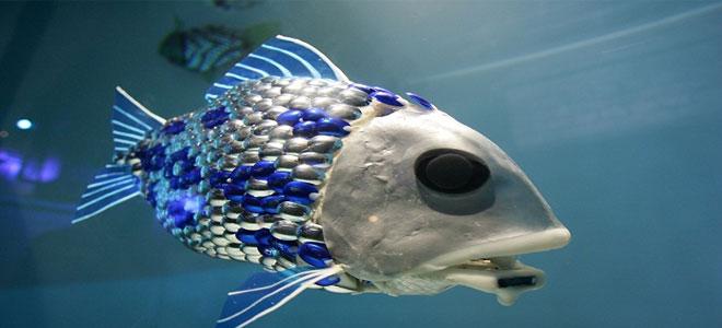روبوت على شكل سمكة يرصد التلوث