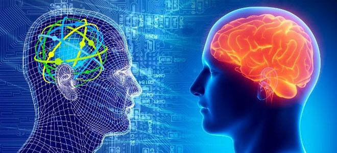 المتغيرات الوراثية سبب اختلاف معدلات الذكاء البشري