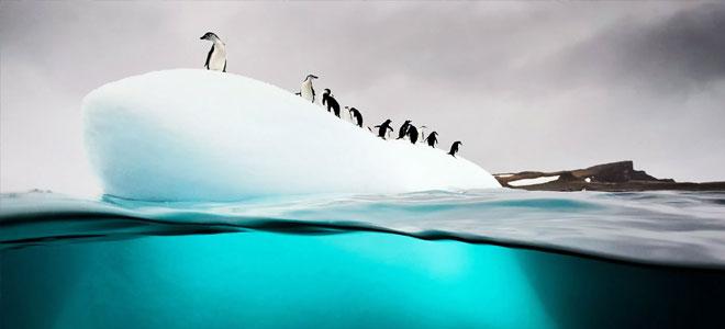 تجربة مناخية تسخِّن قاع بحر القطب الجنوبي