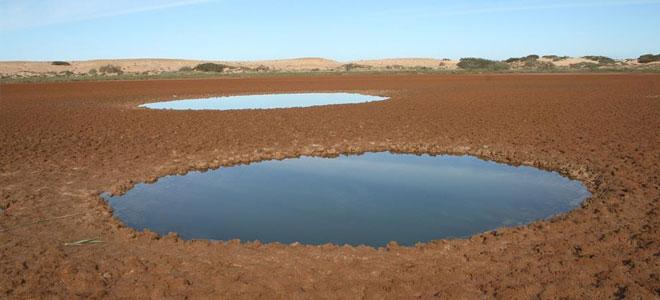 إدراج منطقين رطبتين في المغرب ضمن لائحة «رامسار» العالمية ذات الأهمية الإيكولوجية