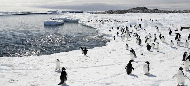 دراسة: منسوب مياه البحار سيرتفع نحو متر حتى مع تنفيذ أهداف المناخ