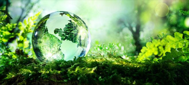 الأمم المتحدة: انكماش التنوع الحيوي يهدد الغذاء والمياه والطاقة في العالم