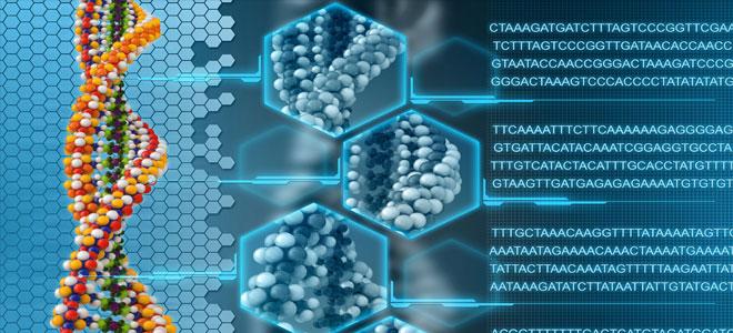 علماء يبحثون إمكانية إنتاج جينوم صناعي بشري