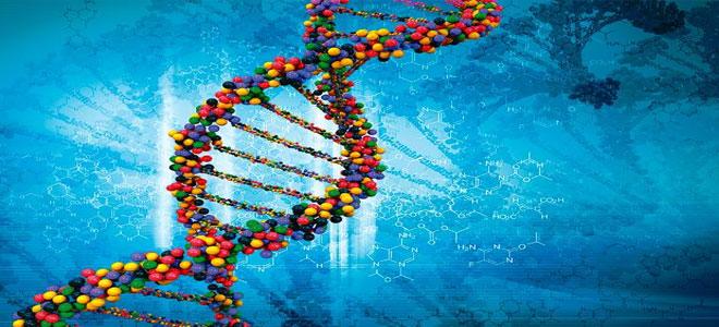فحص الحمض النووي... لقياس الذكاء