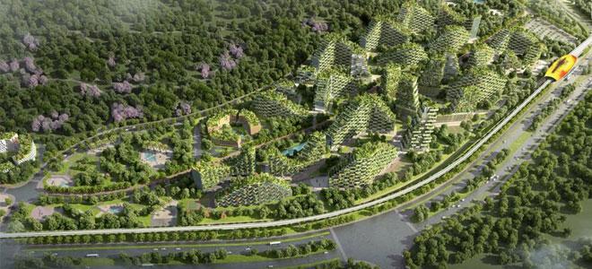 الصين تخطط لبناء 300 مدينة غابية بحلول 2025 لتحسين الظروف البيئية