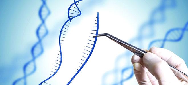 التقنيات الحيوية.. للتخلص من الأمراض الوراثية