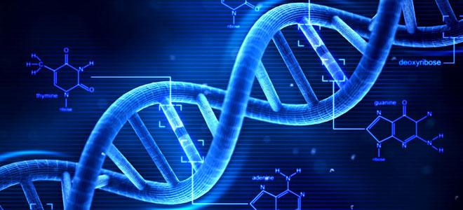 علماء يدشنون مشروعا لرسم الخرائط الجينية لكل أشكال الحياة المعقدة