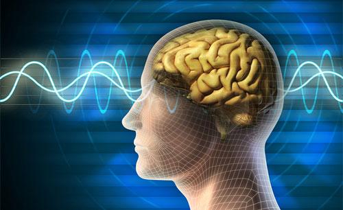 علماء يستخدمون موجات المخ الكهربية لمساعدة مرضى الشلل